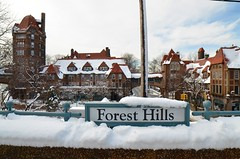 Spring Snow In Forest Hills