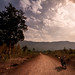 Track, Bolaven plateau, Laos by pas le matin