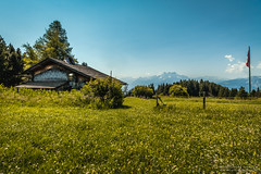 Cabin by the Alps