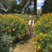 18768 Paul Bot Gardens