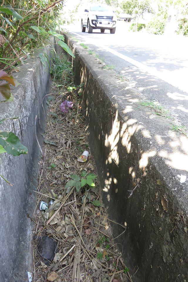 困死在排水溝中的鱉