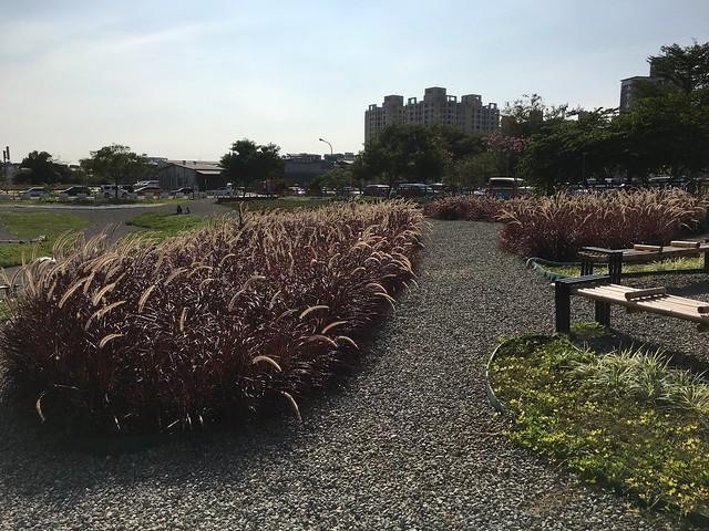 網美景點-康橋河濱公園