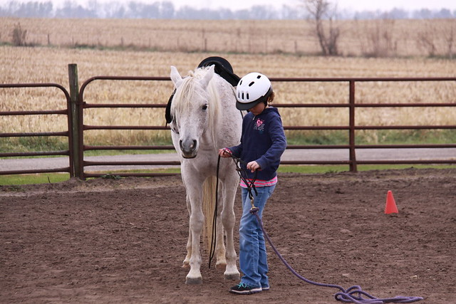 Horse Lessons (10)