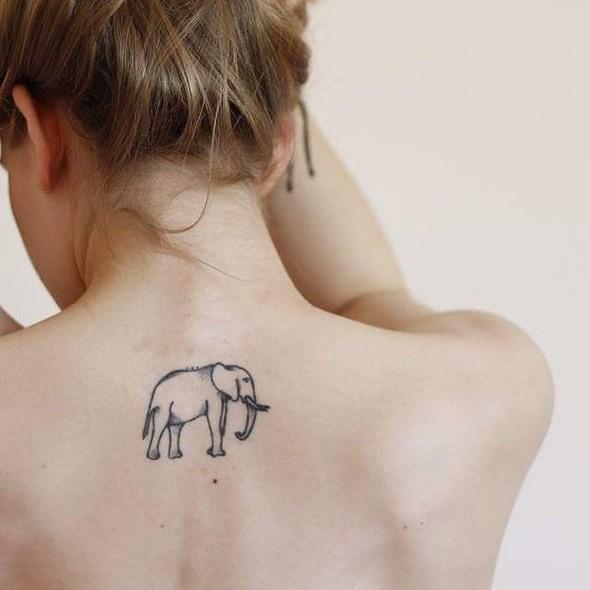 Tatuajes De Elefantes Ideas Originales Y Sorprendentes Mini Tatuajes