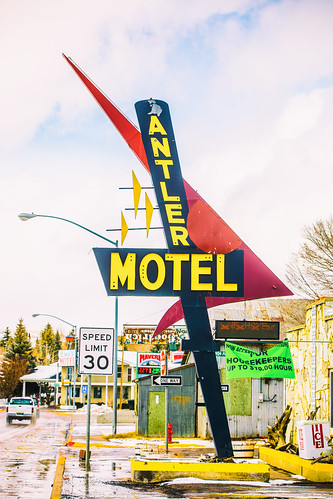 Nights at the Antler Motel