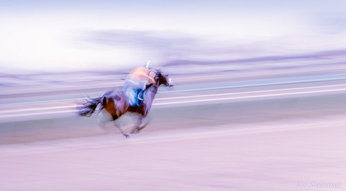 motionblur panning horse training speed motion racetrack poetry artistic abstract pastel aesthetic beauty