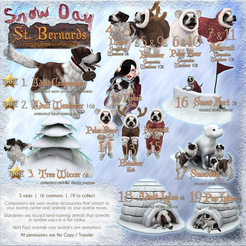 JIAN Snow Day St. Bernards (The Epiphany Dec '18)