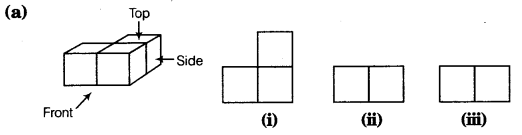 NCERT Solutions for Class 8 Maths Chapter 10 Visualising Solid Shapes 7