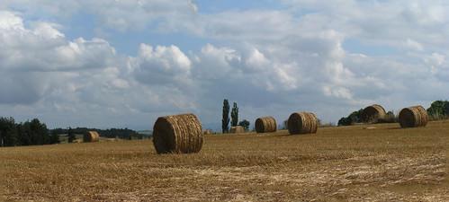 20080901 29188 1002 Jakobus Strohballen Feld Wolken Weite_K_P01