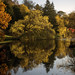 Autumnal Temple Newsam Lake