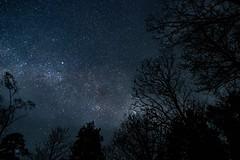 Stjärnhimmel vid Hultasjön