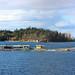 Shack Island Panorama