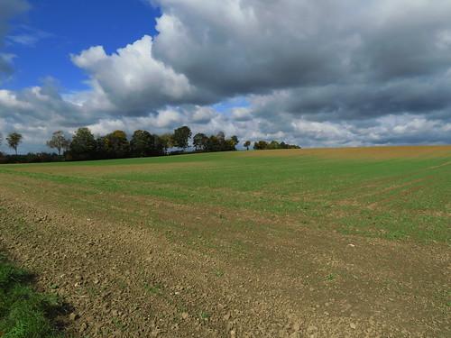 20171006 09 406 ostbay Wolken Herbst Feld Baume