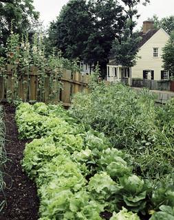 Garden, Old Salem, North Carolina. Original image from Carol M. Highsmith's America, Library of Congress collection. Digitally enhanced by rawpixel.