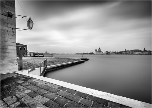 Venice city lines bnw