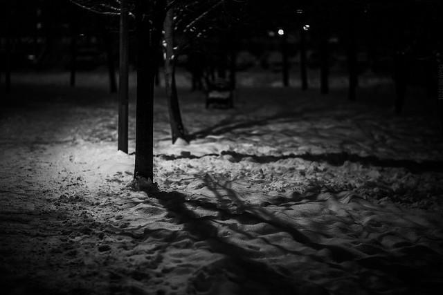 2018.12.12_346/365 - Night Walk