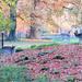 Herfst in stadsboerderij de Hout by Meino NL