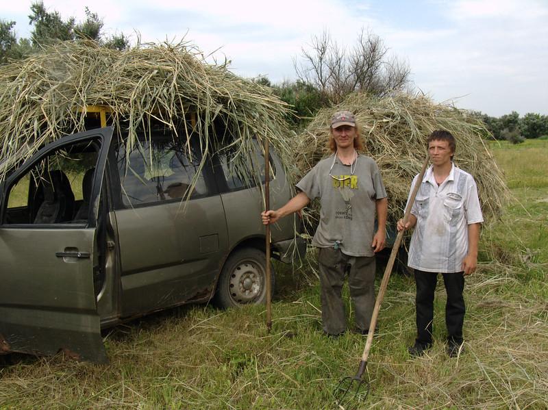 Грузско-Зорянка 28 июня 2018 года — заготовка сена для коров