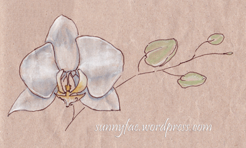 orchid sketched on brown paper