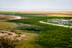 Changing landscapes of huge empty plains, lakes and swamps