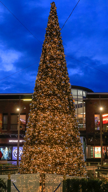 Christmas tree, Gunwharf., Canon EOS 80D, Canon EF 24-105mm f/3.5-5.6 IS STM
