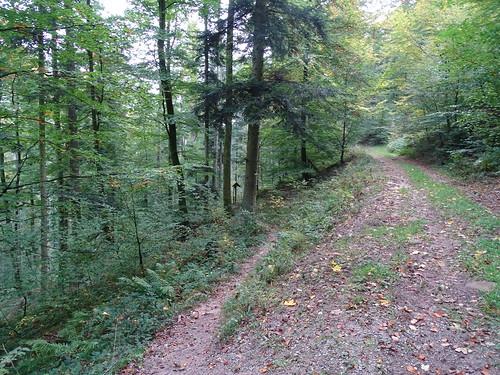A gauche , le sentier vers la grotte Mencke