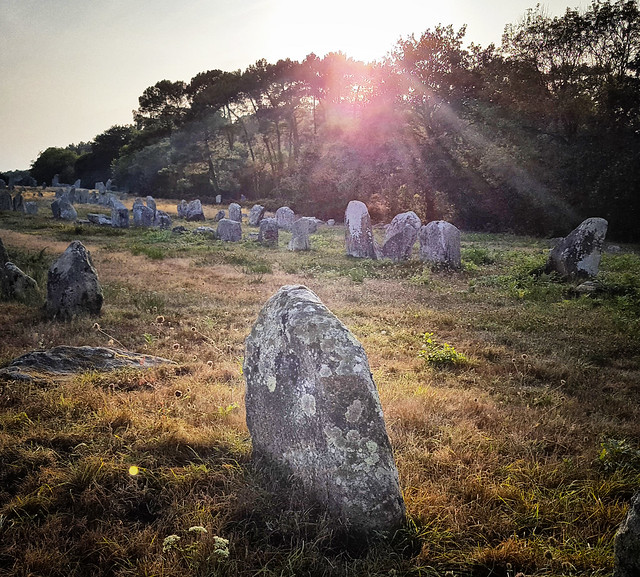 Ancient Carnac standing stones in Morbihan, Brittany, France