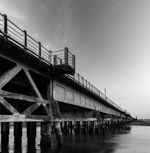 Old Rail Bridge Napier Estuary