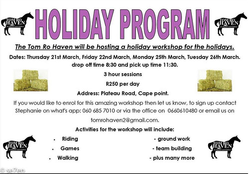 Tom Ro Haven Holiday Programme