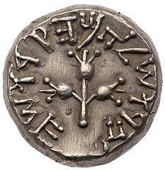 Year 5 shekel reverse
