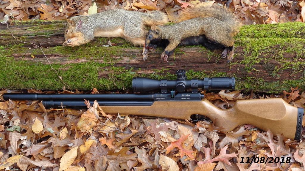22 vs 25 caliber for small game hunting ? - Airguns & Guns Forum