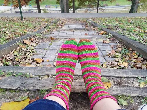 Azalea Socks at Chuck Brown Memorial Park