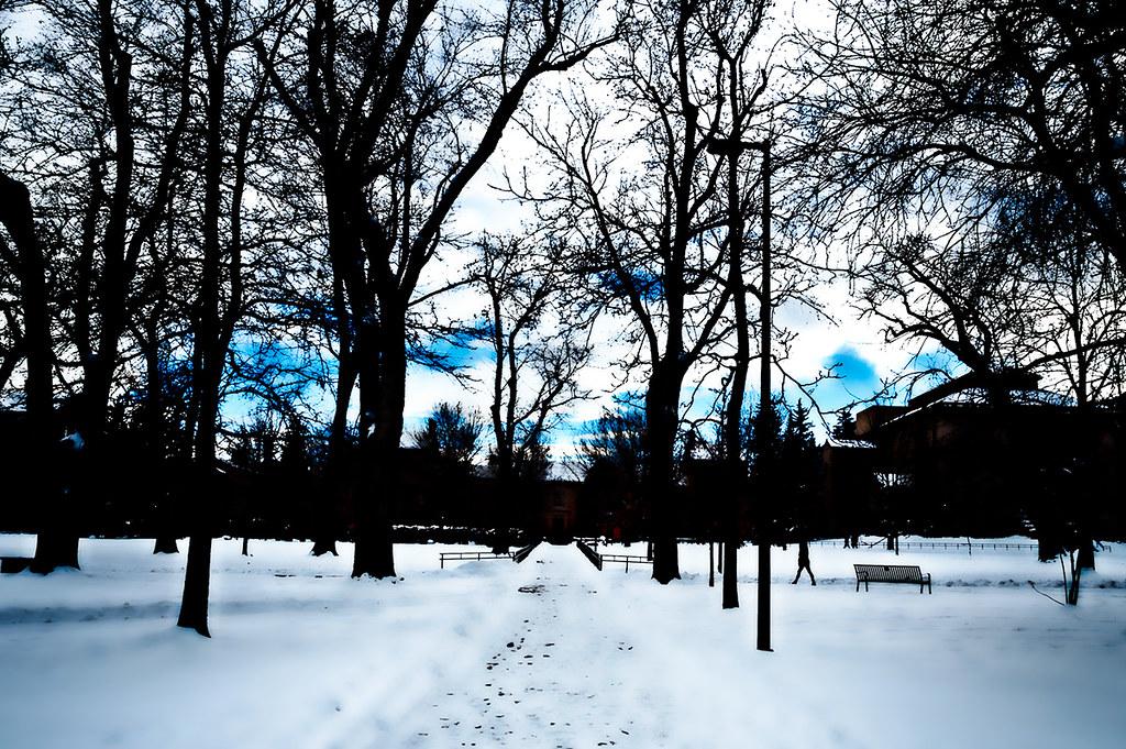 CU Norlin Quad, Boulder: January 2015