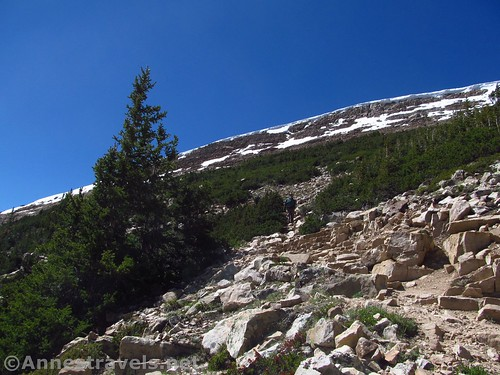 The trail on the somewhat lower slopes of Bald Mountain, Uinta Mountains, Utah