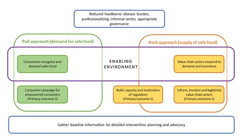 Conceptual framework of a pull–push approach to improving food safety