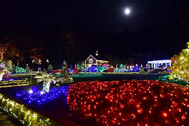 Holiday lights at Shore Acres State Park