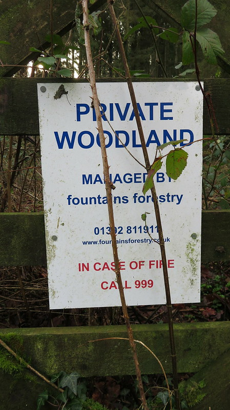 Fountain Forestry own this woodland