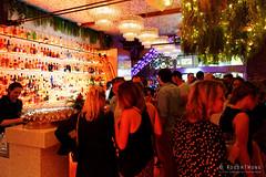 20181216-61-Botanica Bar interior