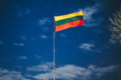 Lithuanian Flag #17/365