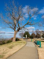 Martyrs Park Walk