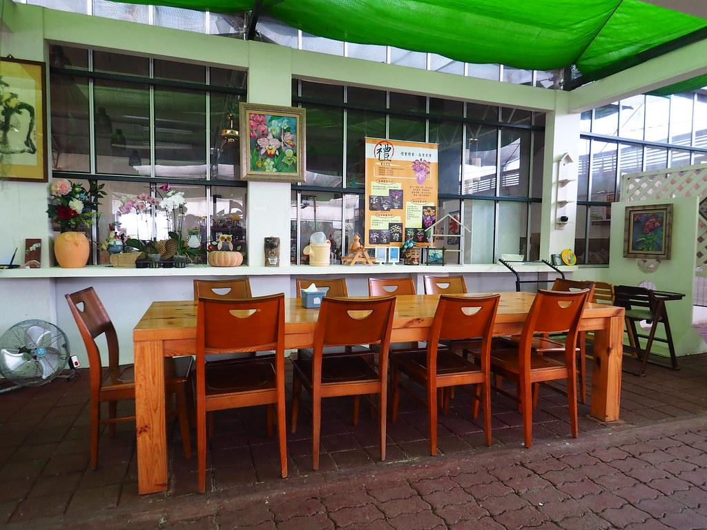 山上蘭科植物園 (12)