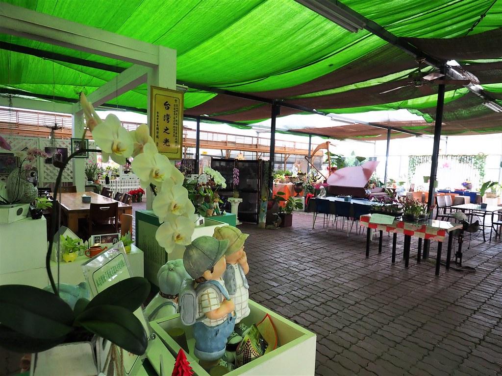 山上蘭科植物園 (11)
