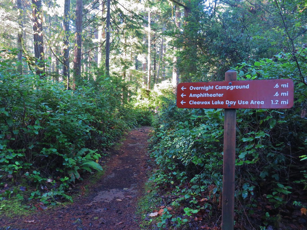 Trail between Woahink and Cleawox Lake