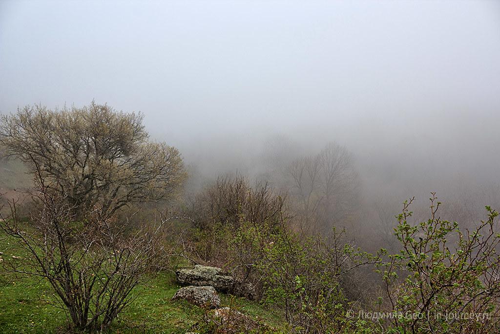 туман по дороге в Долину Привидений