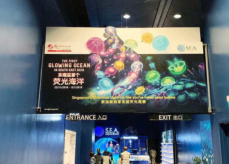 S.E.A Aquarium's Glowing Ocean
