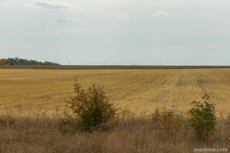 Бескрайние поля, Воронежская область