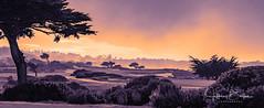 2018 12 Monterey Peninsula