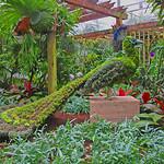 Atlanta Botanical Garden, Peacock Sculpture, Atlanta, GA (36 of 36)