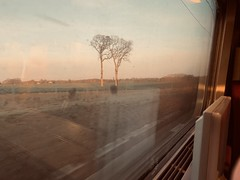 Back from Rennes #tgv #france #train #countryside - Photo of Amanlis