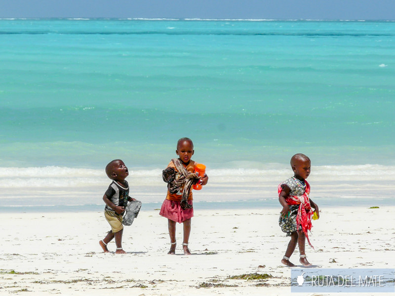Guia para viajar a Kenia y Tanzania P1110997